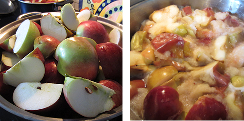 Simmer apples on stove top until soft.