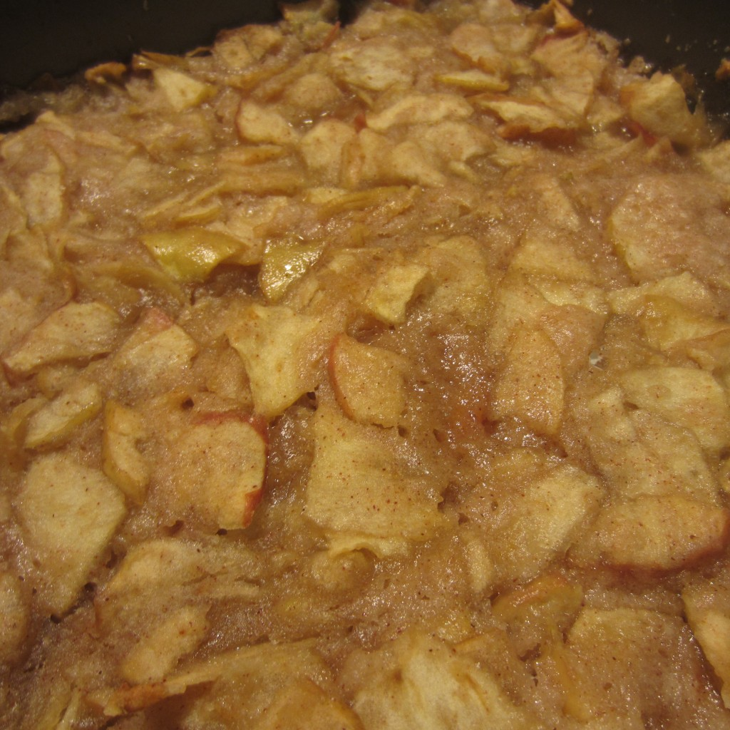 Blimpy Girl's Apple Crisp