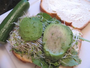 Avocado and alfalfa sprouts sandwich